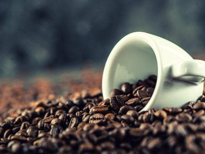 Kawa arabica czy robusta?